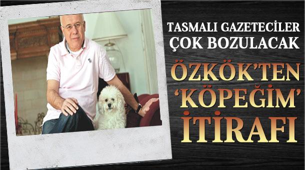 ozkok-kopek1