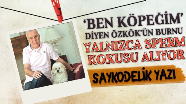 ozkok-sayko