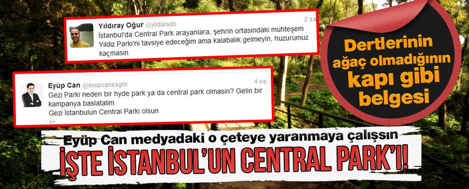 central-gezi