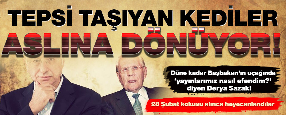 derya-sazak3