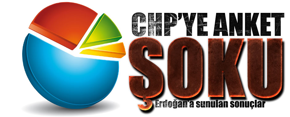 chp-anket1