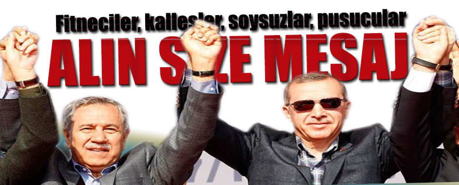erdogan-arinc1