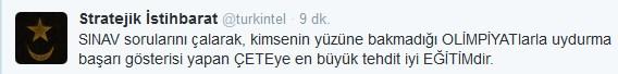 turgev3