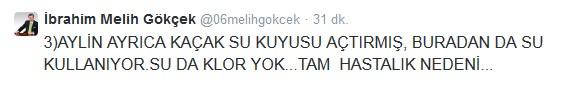 gokcek6