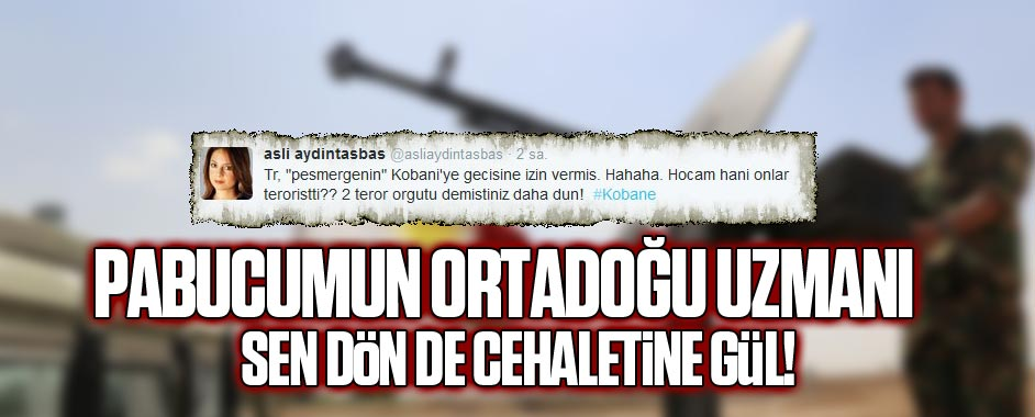 Milliyet yazarı Aydıntaşbaş'ın cehaleti pes dedirtti!
