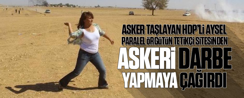aysel1