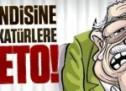 Şimdi de kendisine küfreden karikatürlere aşık Feto!
