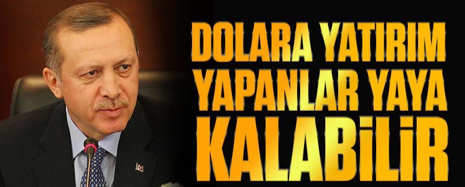 erdogan-dolar