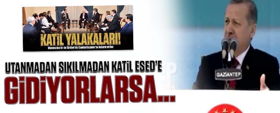 erdogan-esed