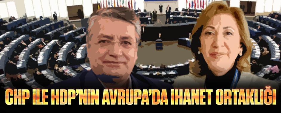 avrupa-chp