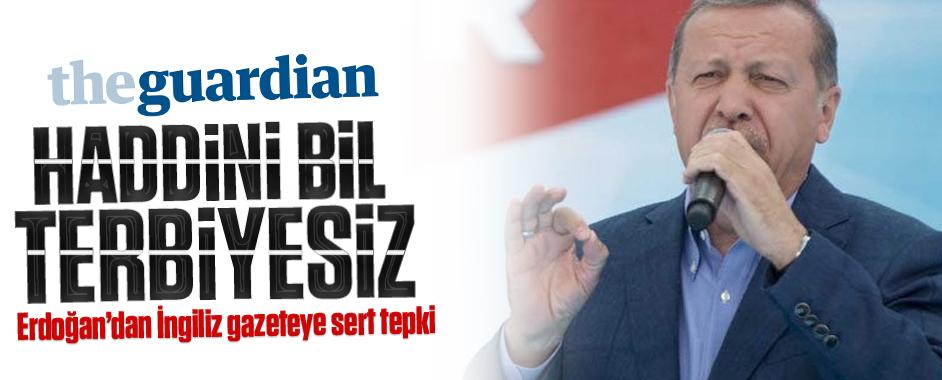 erdogan-guardian2