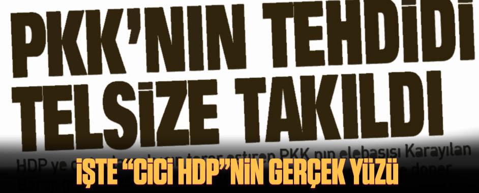 hdp-pkk
