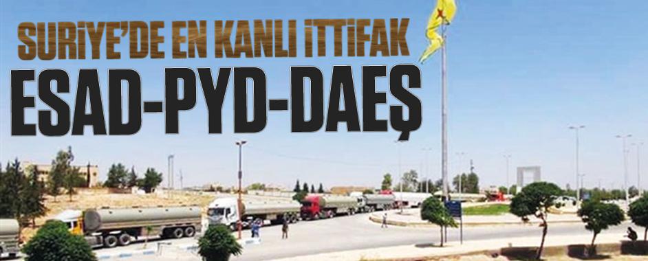 pyd-daes