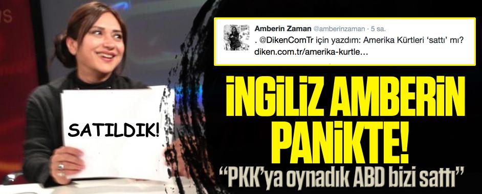 amberin-pkk1