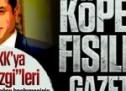 """HDPKK'ya aşk """"Ezgi""""leri söyleyen Aydın Doğan beslemesinin ipliğini pazara çıkaran yazı!"""