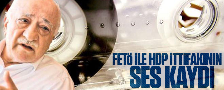 feto-hdp1
