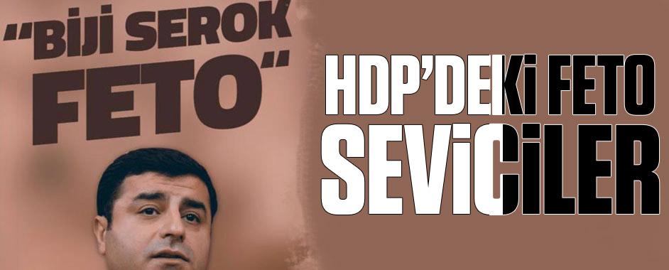 hdp-feto