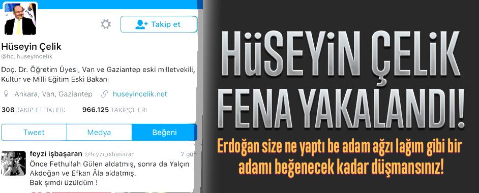 hcelik7
