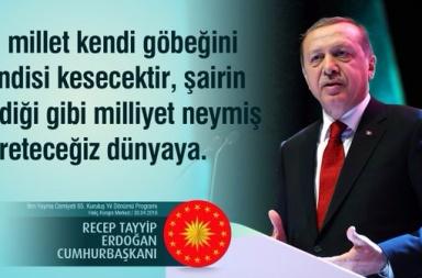 erdogan123