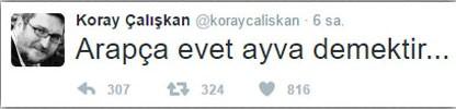 koray1